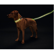 Hunter LED Поводок Manoa Glow 30/120 желтый